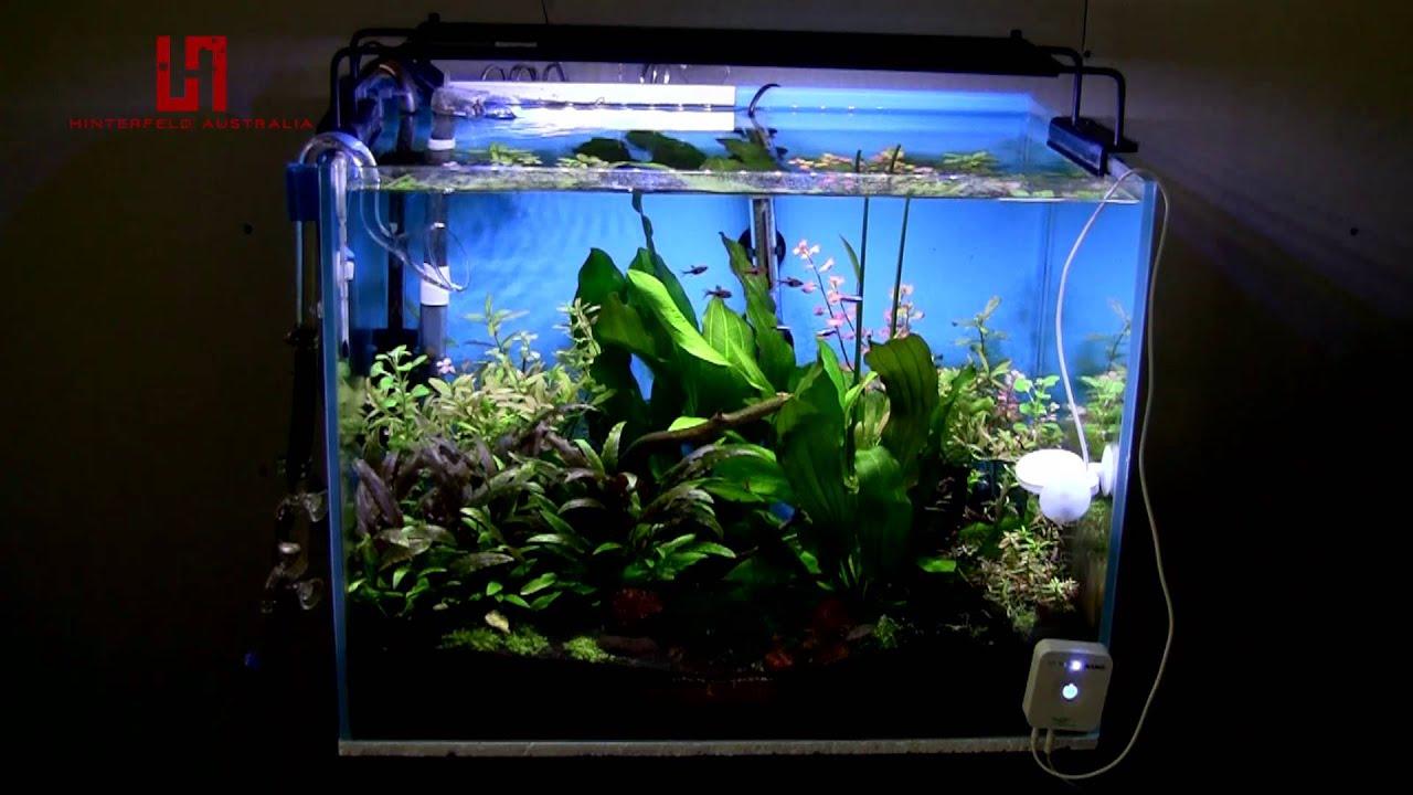 hinterfeld australia nemo aqua fresh led planting lamp aquarium