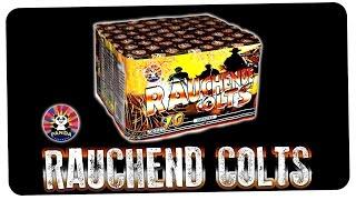 Panda Rauchende Colts (70 Schuss Batterie) - Planet Firework