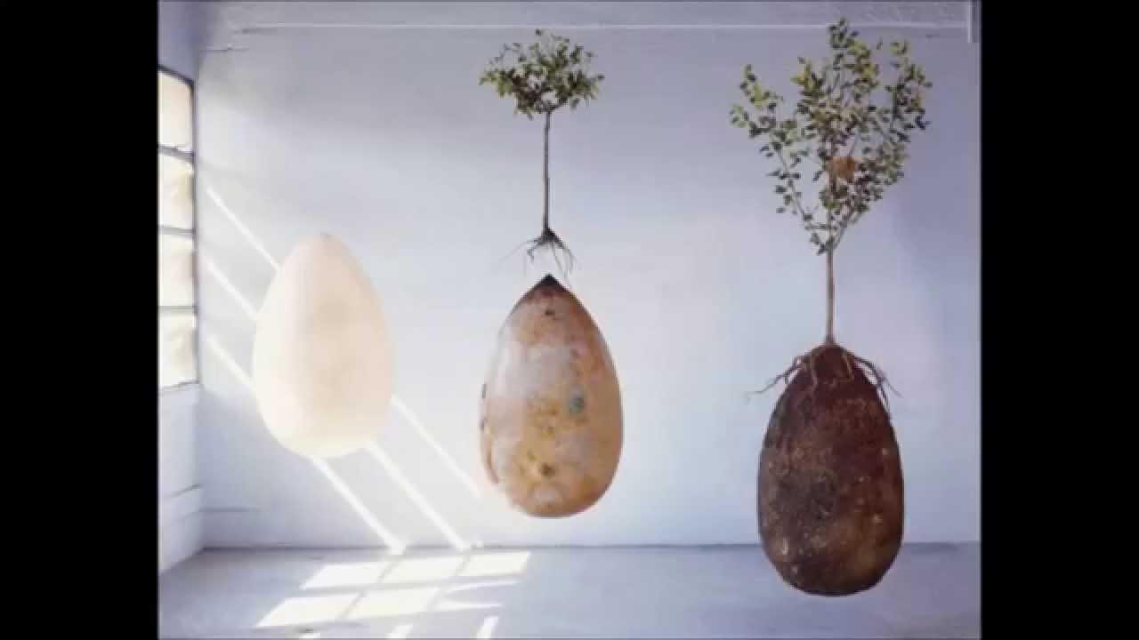 Capsula Mundi Burial Pods YouTube - Capsula mundi burial pods