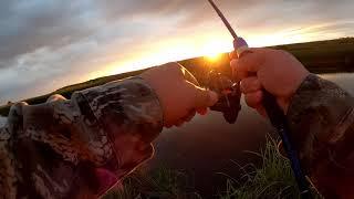Рыбалка в сентябре 2021 В поисках щуки ЩУКА в сентябре на спиннинг
