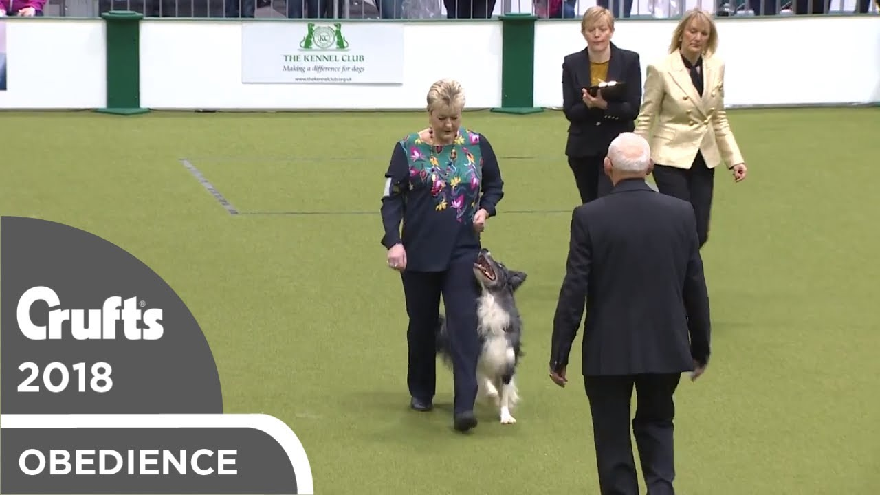 Obedience - Dog Championship - Part 2   Crufts 2018
