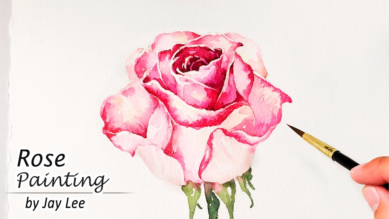 How to paint a rose in watercolor painting flowers for How to paint a rose watercolor