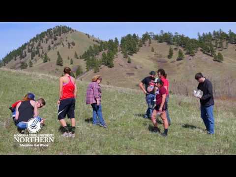 MSU-Northern: Biology Program Overview