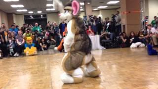 Biggest Little Fur Con 2014 Fursuit Dance Competition -10- Siber Hamster