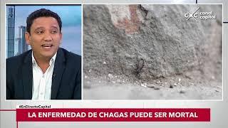 Скачать Qué Síntomas Provoca El Mal De Chagas