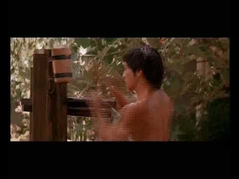 Bruce Lee Wooden Dummy exercises