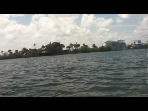 Dolphins - Indian River @ FL