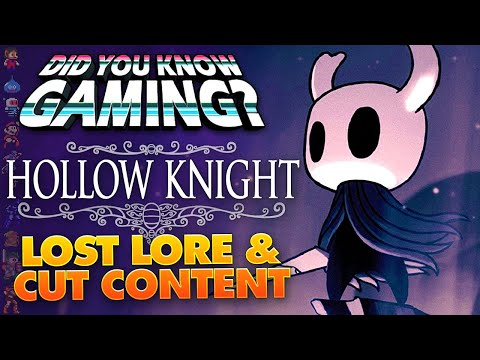 Hollow Knight Lost
