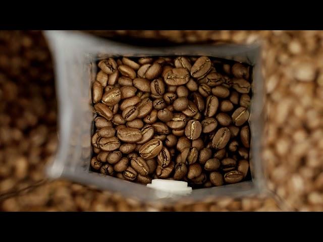Essential Coffee Company