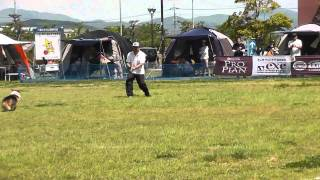 ピース13歳11ヶ月岡山六番川2011.5.7