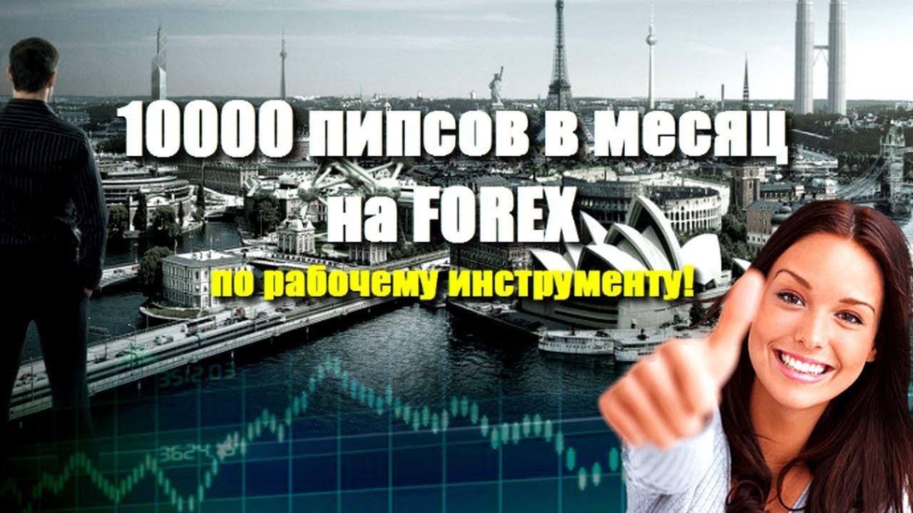 форекс стратегия 100 в месяц