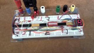 Binary Counter with reset switch