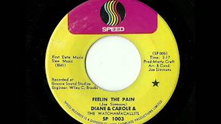 Diane & Carole & The Watchamacallits - Feelin The Pain (Speed)