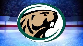 Bsu men's hockey beats ferris state in weekend sweep
