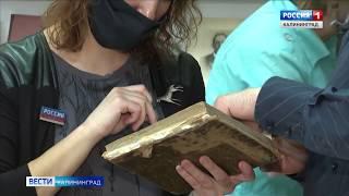 В Калининграде открылась первая в регионе библиотека музей
