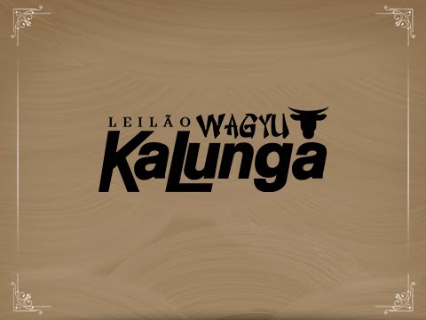 Lote 24 (Erika 58 Kalunga - WAGY 58)