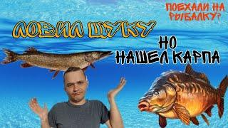 Рыбалка в Ульяновской области Ловил ЩУКУ А НАШЕЛ ОГРОМНОГО КАРПА