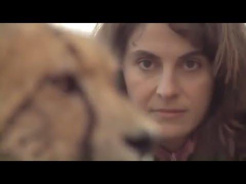 La Communicatrice Animale - Anna Breytenbach