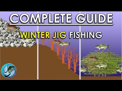 Winter Jig Fishing Basics | When, Where, And How To Fish Jigs For Winter Bass