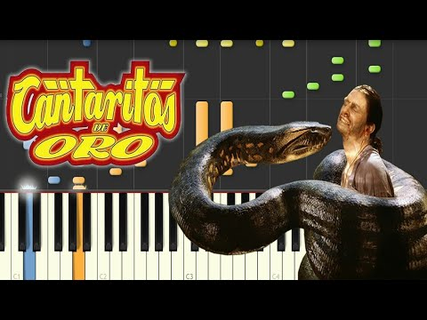 Cantaritos de Oro - LA ANACONDA / Instrumental / Synthesia Cover
