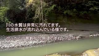 千葉県・関の犬岩