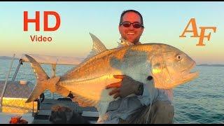 jigging fishing video abu garcia reel big giant trevally whitsundays andysfishing ep 53
