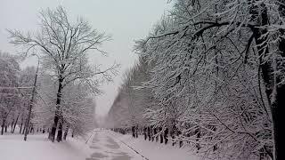 Снегопад в Москве 31 января