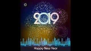 Happy New Year 2019 kỷ Hợi