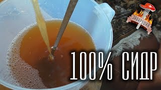 Сидр из 100% яблочного сока в домашних условиях