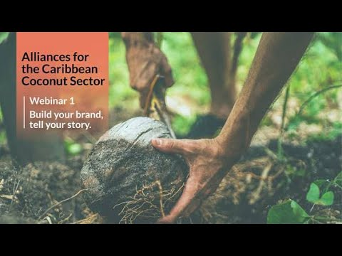 ITC - CARDI Alliances for Action Webinar 1: Build your Brand, Tell your Story
