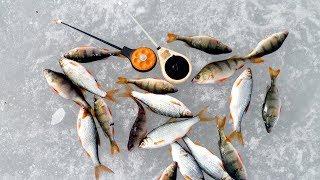 Оснастка для зимней удочки с отводным поводком Зимняя рыбалка