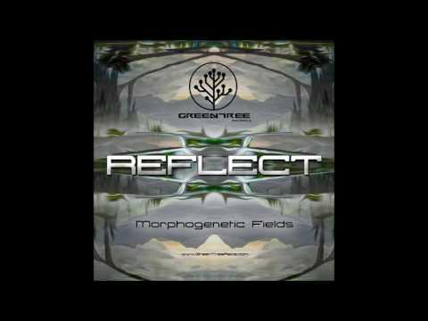 Morphogenetic Fields - Reflect [Full EP]