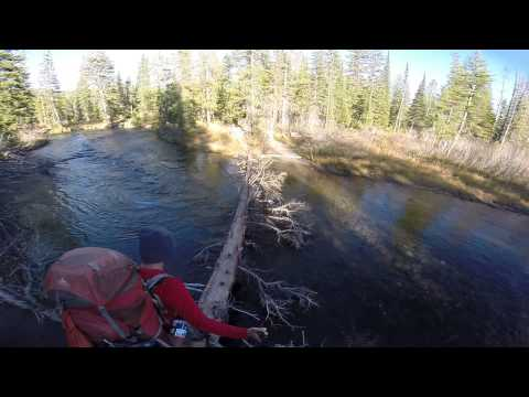 Crossing Mountain Ash Creek in Yellowstone National Park