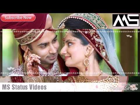 Tere Liye Chodu Me To Duniya Sari Jaan Se Bhi Mujhe Teri Yaari | MS Status Videos