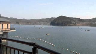 入鹿池(いるかいけ) 愛知県犬山市 人工の農業用ため池。