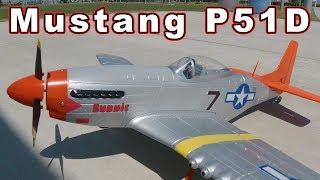 Great Beginner Warbird // Volantex Mustang P51D RTF Plane ✈️