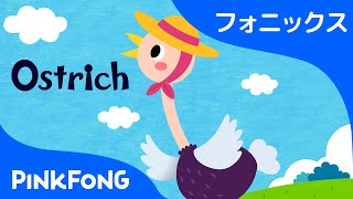 Ostrich | フォニックス読みO | ABCフォニックスの歌 | ピンクフォン英語童謡