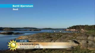 Äntligen, sommaren breder ut sig i hela landet! - Nyhetsmorgon (TV4)