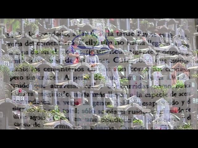 Nocilla Dream Condensed 18 06 20 SIETE