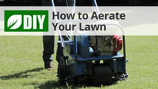 How to Core Aerate Your Lawn - Lawn Aeration Tips