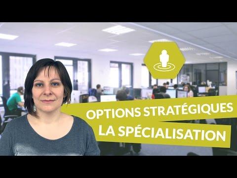 Les principales options stratégiques des entreprises : la spécialisation - Management - digiSchool