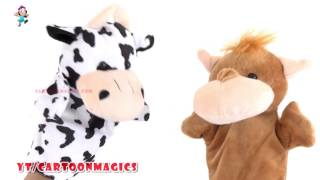 Happy Birthday Song || Funny Cattle cow Hippopotamus puppets Kids Songs