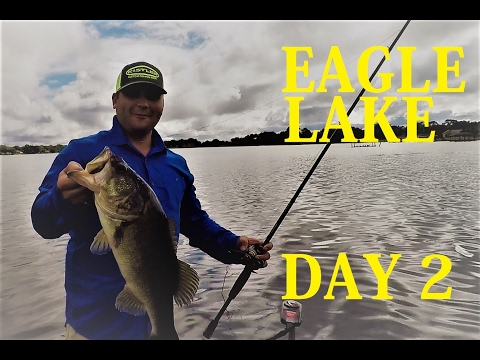 Florida Bass Fishing | Eagle Lake
