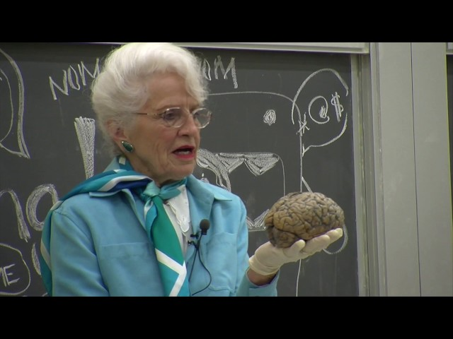Marian C. Diamond, 90, Student of the Brain, Is Dead - The New York ...