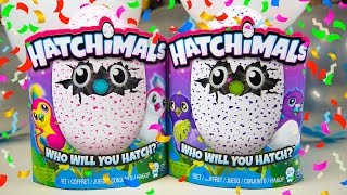 Hatchimals Unboxing Birthday Party Toys for Girls Surprise Eggs Toy Hatchy Birthday Kinder Playtime