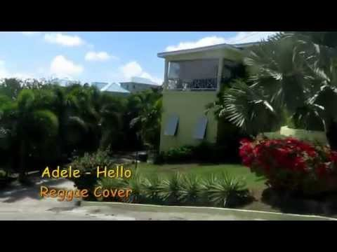 Adele   Hello Reggae Cover