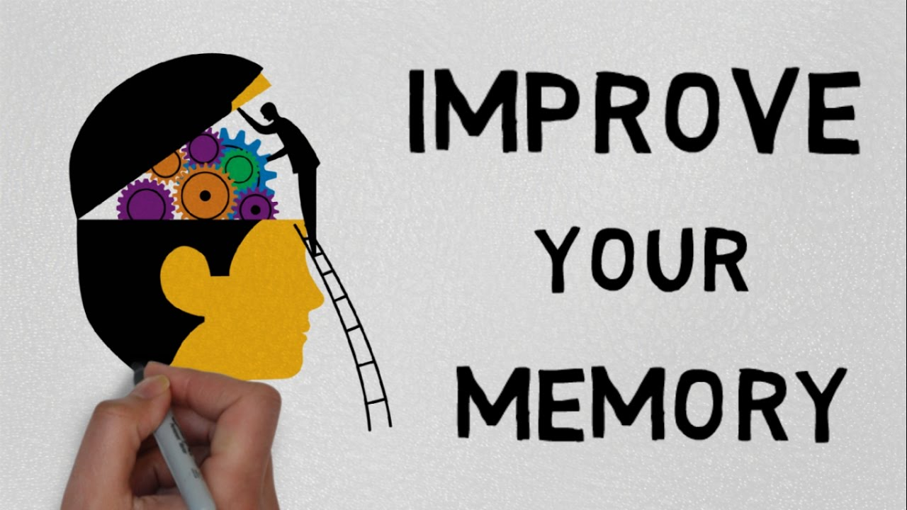 Watch Memory Improvement: How To Get It video