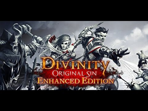 Let's Play Divinity : Original Sin - Enhanced Edition - Episode 023 - Cats and Love
