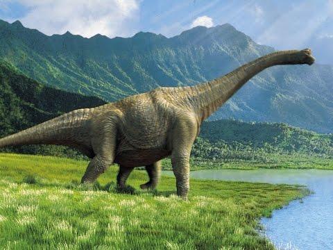 Вопрос: Кто такие титанозавры, жившие в районе Волги 65-200 млн лет назад?