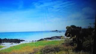 """UFO Found Netflix S1 E3 Wildest Islands Galapagos """"Darwin's Eden""""."""